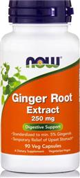 FOODS GINGER ROOT EXTRACT ΑΝΑΚΟΥΦΙΣΗ ΑΠΟ ΤΗ ΝΑΥΤΙΑ ΚΑΙ ΤΙΣ ΠΡΟΣΩΡΙΝΕΣ ΣΤΟΜΑΧΙΚΕΣ ΔΙΑΤΑΡΑΧΕΣ 250MG 90CAPS NOW από το PHARM24