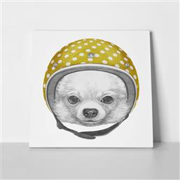 ΠΙΝΑΚΑΣ ΣΕ ΚΑΜΒΑ DOG PORTRAIT CHIHUAHUA HELMET STICKY