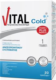 COLD 20LIPID CAPS VITAL PLUS